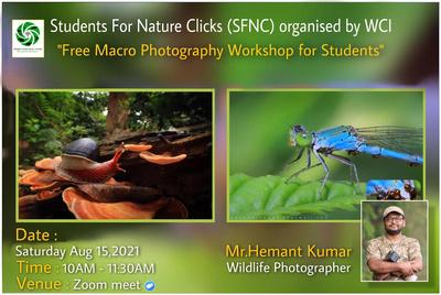 SFNC- Macro Photography Workshop