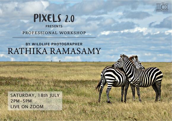 Photography workshop(webinar)@Photography club of IIT-Kanpur
